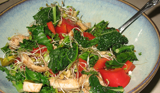 Post image for Kale, Chicken and Bell Pepper Salad