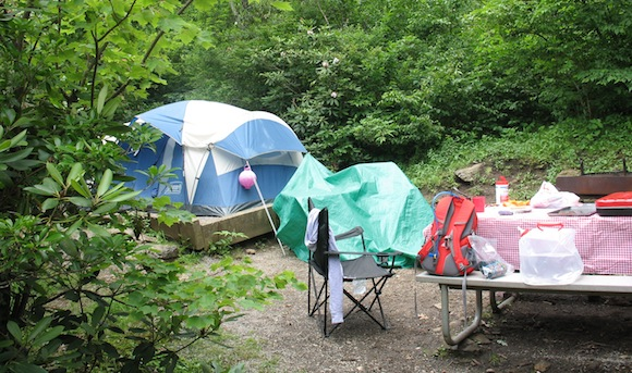 Our campsite this year at Mount Pisgah