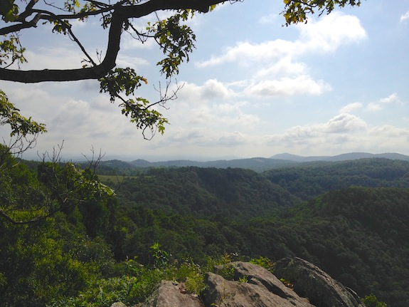 The view from the Wildcat Rocks overlook within Doughton Recreation Area.